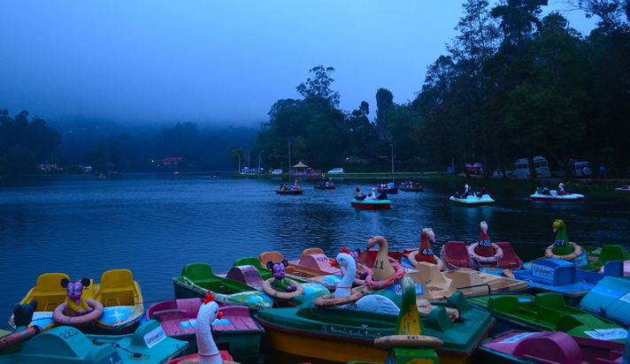 kodaikanal-offer-tour-budget-package