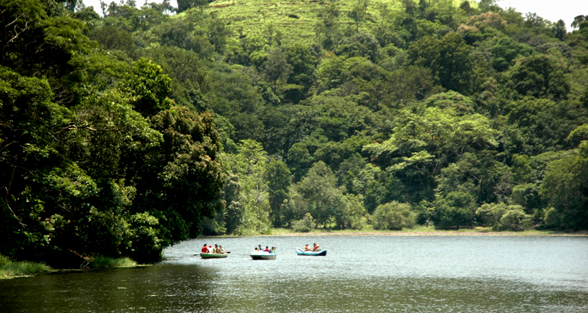wayanad-star-tour-package