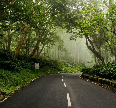 yercaud-tours